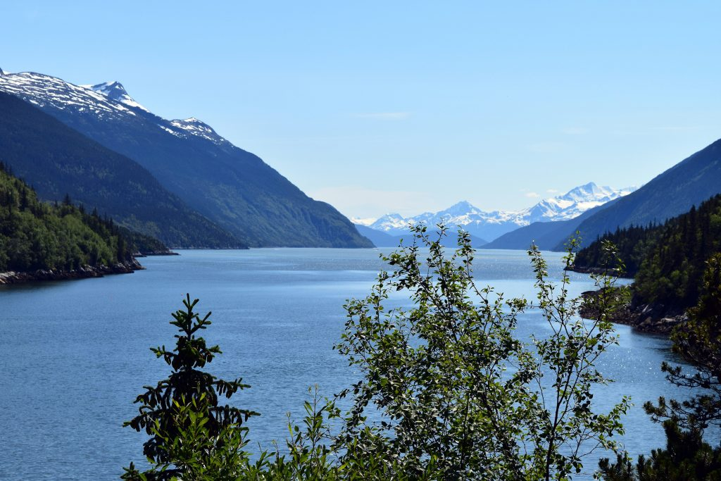 the road to dyea, Skagway