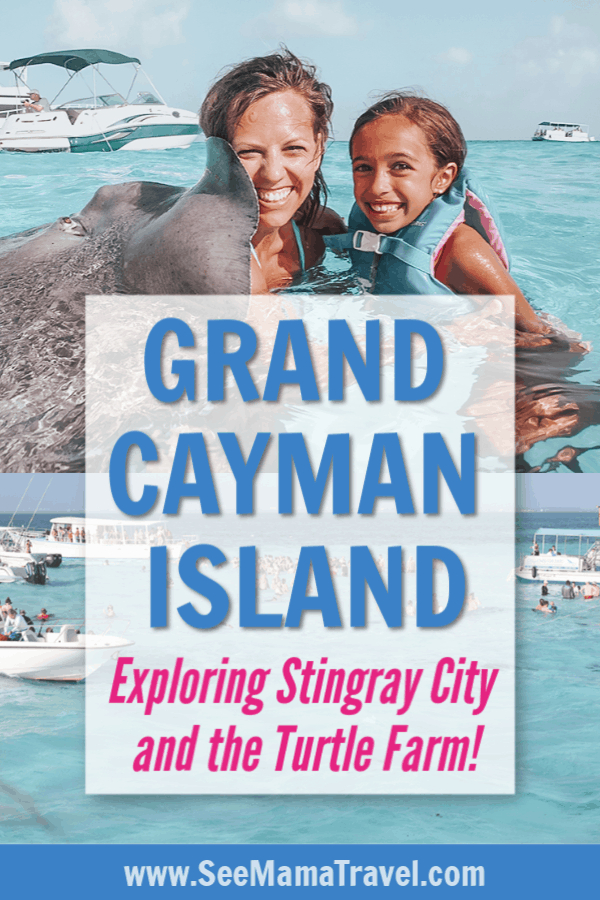 stingray city, grand cayman, cruise excursion, Caribbean