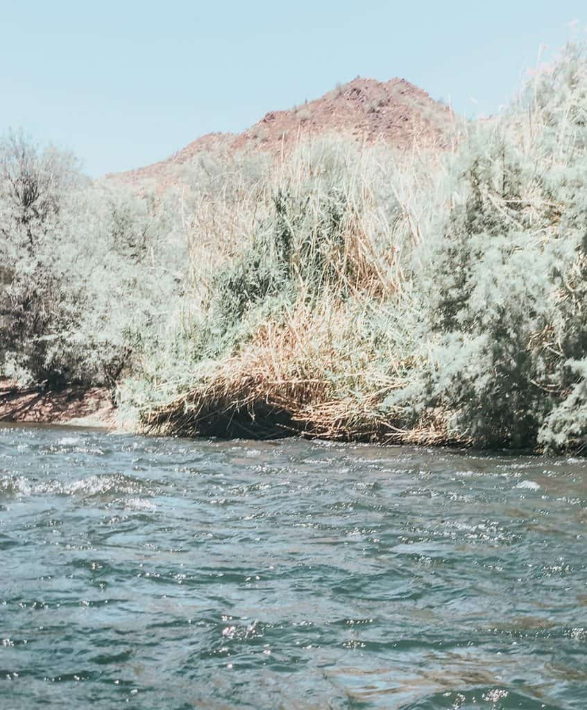 Rapids while tubing in Arizona