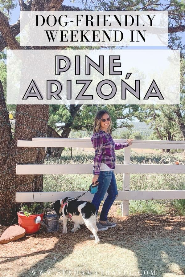 A Dog-Friendly Weekend in Pine, Arizona
