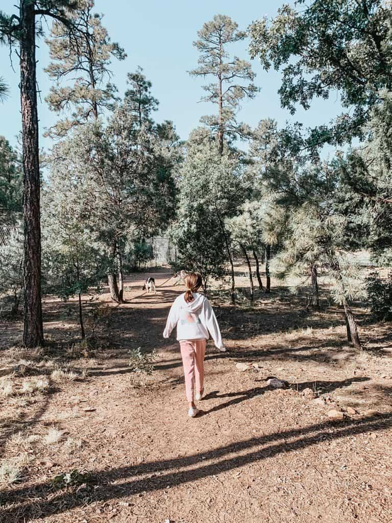 What to do in Pinetop, Arizona
